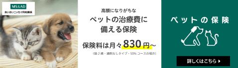 あいおいニッセイ同和損保【ペットの保険】